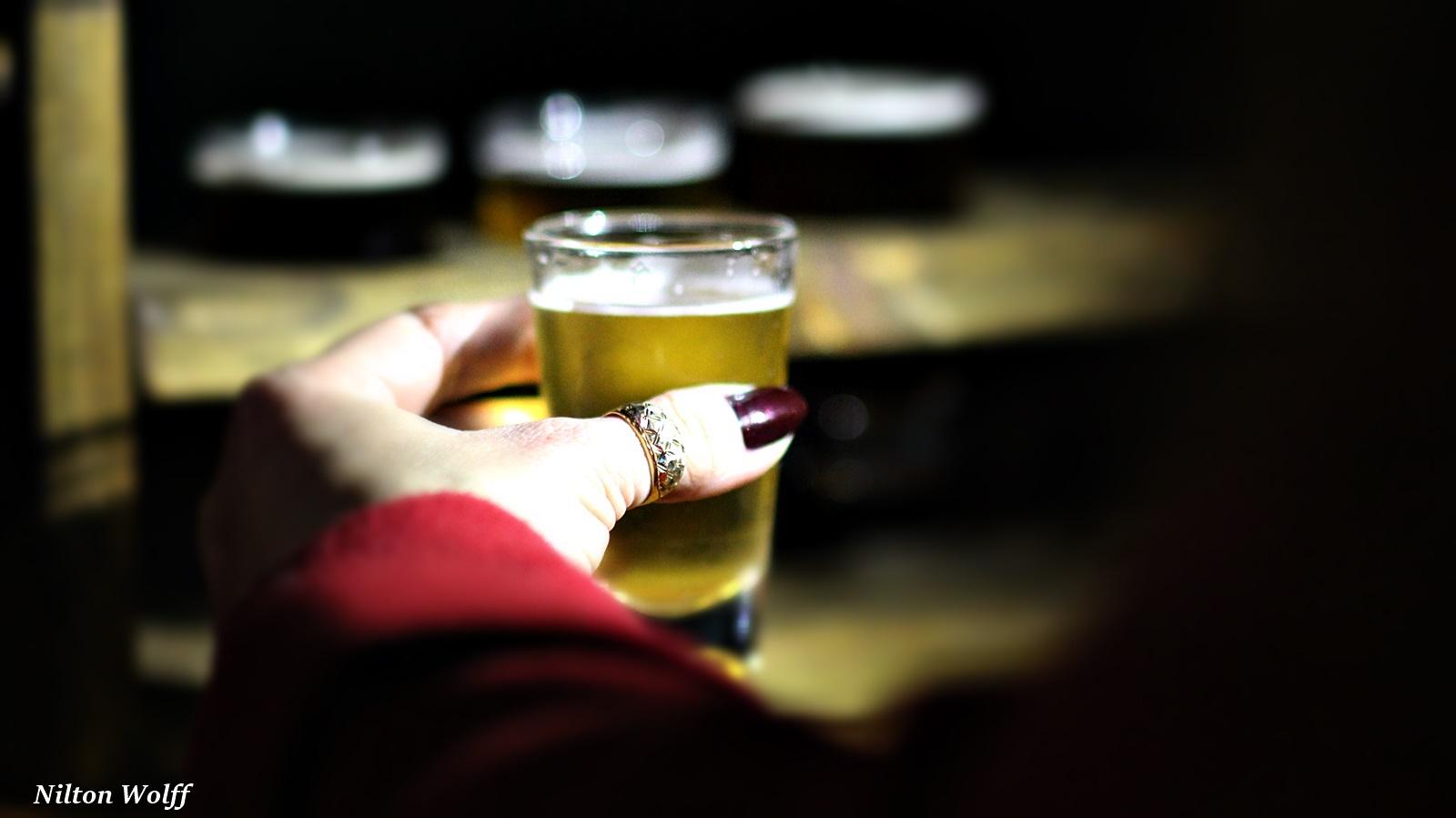 Galeria 23 - Notícia Lages Turismo Bus Bier: Conhecendo a Rota da Cerveja na Serra Catarinense